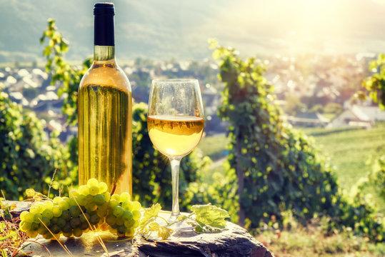 Bottle and full glass of white wine over vineyard background