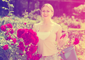 glad young woman working with bush roses with horticultural tool