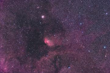 Tulpennebel / Tulip Nebula