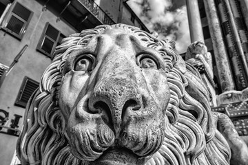 Lion Statue Cathedral San Lorenzo, Liguria, Genoa, Italy / Sculpture of a stone lion in cathedral of St. Lawrence