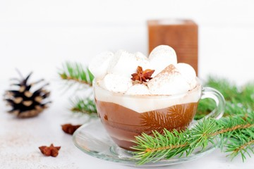 Winter hot drink. Christmas hot cocoa with marshmallow and spices