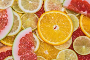 Colorful family of citrus fruits - slices  lemon, lime, grapefruit, orange, pomelo