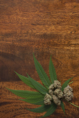 Cannabis sativa flower buds and leafs on wooden background with copyspace