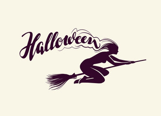Halloween. Beautiful witch flying on broomstick. Greeting card. vector illustration