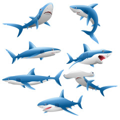 cute shark cartoon collection