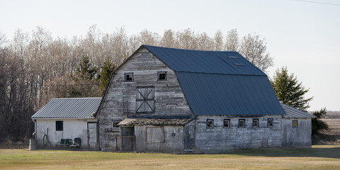 Old barn in a field, Manitoba, Canada