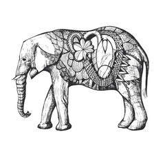 Hand Drawn African elephant. Black silhouette with decorative elements.