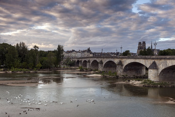 Orleans panorama with Loire River