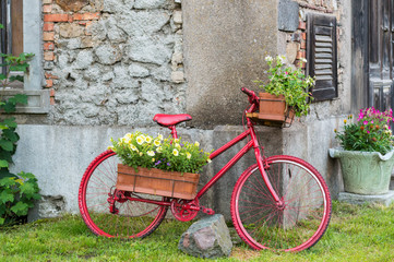 Decorative bicycle equipped basket flowers garden, red bicycle,