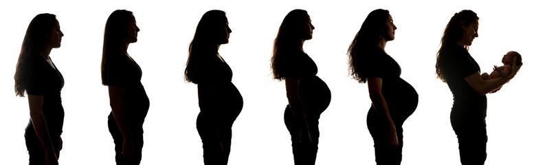 Woman's pregancy progression