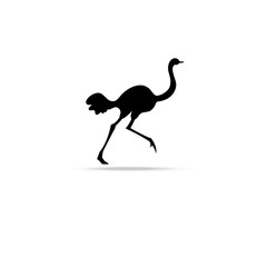Graphic symbol of ostrich