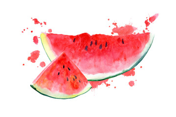 Postcard with watermelon and blotch.Fruit picture.Watercolor hand drawn illustration.