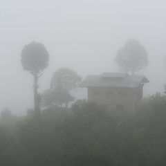 Fog over landscape in Bhutan, Punakha Valley