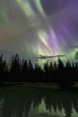 Aurora Borealis, Northern Lights, Mendenhall Lake, Tongass National Forest; Alaska, United States of America