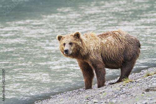 Horn Lake (MA) United States  city images : ... lake clark national park & preserve chinitna bay;Alaska united states