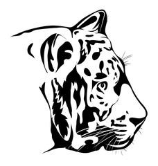 Bengal tiger potrait