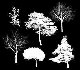 six white tree silhouettes isolated on black