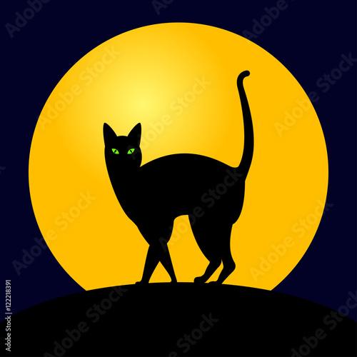 Icono plano gato negro con luna en fondo azul oscuro for Fondo azul oscuro