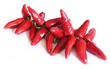Piments d'Espelette / Espelette pepper (Capsicum annuum)