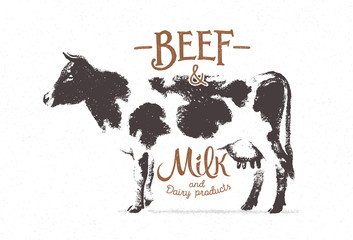 Cow with inscriptions, hand-drawn vector graphic illustration.
