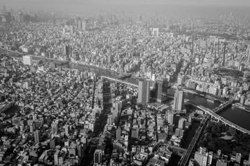 Top view of Tokyo city in the morning. Shoot in black and white shot.
