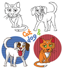 Pets cat and dog