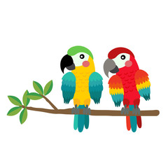 Colorful Parrot bird perching on the branch animal cartoon character. Isolated on white background. Vector illustration.