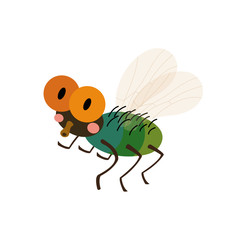 Fly animal cartoon character. Isolated on white background. Vector illustration.