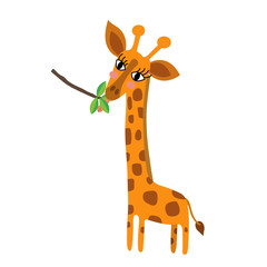 Giraffe eating leaves animal cartoon character. Isolated on white background. Vector illustration.