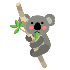 Koala bear climbing tree animal cartoon character. Isolated on white background. Vector illustration.