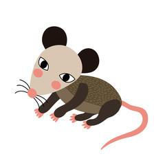 Opossum animal cartoon character. Isolated on white background. Vector illustration.
