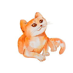 watercolor red cartoon cat on white illustration