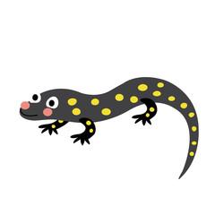 Salamander animal cartoon character. Isolated on white background. Vector illustration.