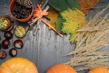 Halloween: тыква, каштаны, трава, листья и шишки