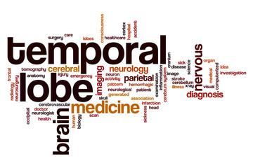 Temporal lobe word cloud
