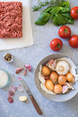Ingredients for bolognese sauce: ground meat, tomato, onion, garlic, herbs and seasonings