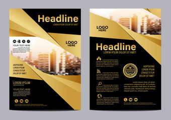 Gold Brochure Layout design template. Annual Report Flyer Leaflet cover Presentation Modern background. illustration vector in A4 size