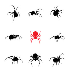 Black widow spider in silhouette style