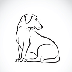 Vector of a dog labrador on white background