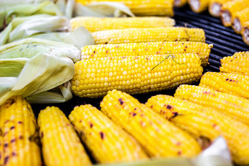 Closeup delicious BBQ grilled Mexican corn on the cob, vegetable food background. Barbecued roasted on the hot stove fresh tasty sweet corn. Ready to Eat