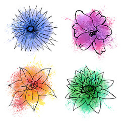 Set of hand drawn flowers on watercolor spots and splashes