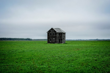 Abandoned Wooden House In Green Field