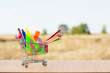 Back to school concept with shopping cart and multicolored pencils on the white background. The first of September. The day of knowledge. Buying school supplies