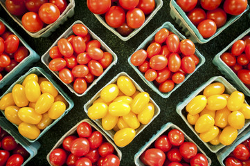 Yellow and red cherry tomatoes in containers, Denton, Maryland, United States of America