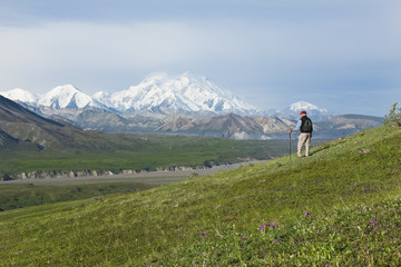 Hiker in tundra in Thorofare Pass with Mt Mckinley, Alaska, USA