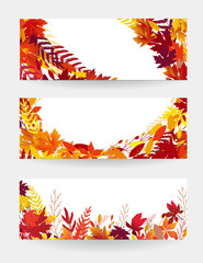 Set of  autumn vector banners