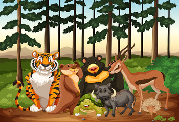 Many animals living in the jungle