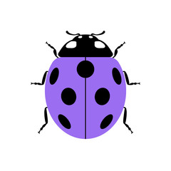 Ladybug small icon. Lilac lady bug sign, isolated on white background. Wildlife animal design. Cute colorful ladybird. Insect cartoon beetle. Symbol of nature, spring or summer. Vector illustration