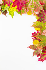 Colourful autumn fall leaves frame on white background.