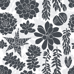 Seamless pattern with silhouettes of different succulents. Black and white floral background